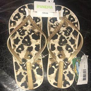 NWT Ipanema flip-flops